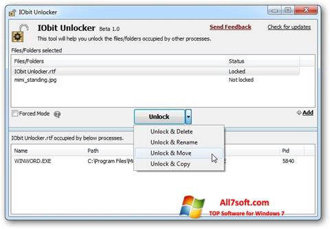 स्क्रीनशॉट IObit Unlocker Windows 7